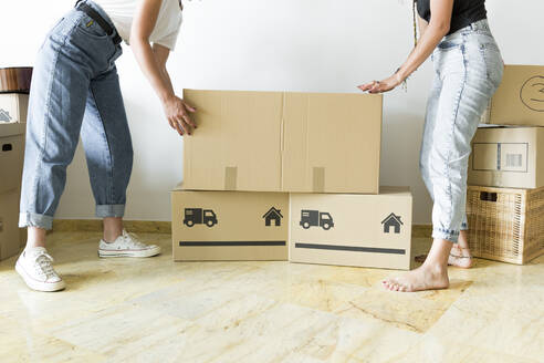 Two friends moving into new home - JPTF00217