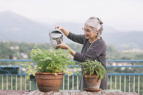 Smiling senior woman watering plants on her roof terrace, Belluno, Italy - ALBF00900