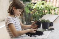 Girl repotting plant - ALBF00934