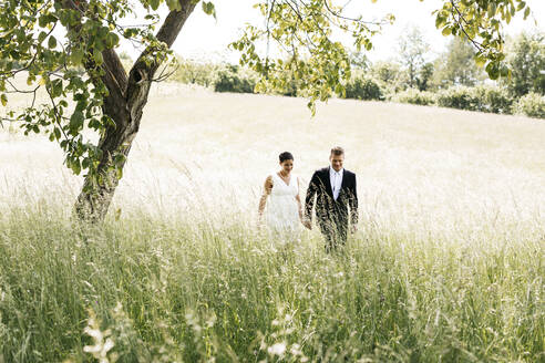 Pregnant bride and her husband walking on a meadow - HMEF00479