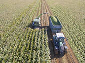 Aerial view of tractor filling trailer with harvested maize in sunny field - JUIF01988