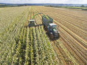 Aerial view of tractor filling trailer with harvested maize in sunny field - JUIF01991