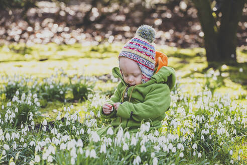 Baby girl sitting on a meadow covered with snowdrops - IHF00170