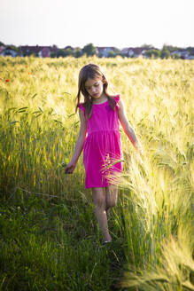 Portrait of little girl walking on edge of rye field - LVF08136
