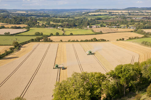 Rural landscape with Combine harvesters, harvesting wheat - JUIF02044