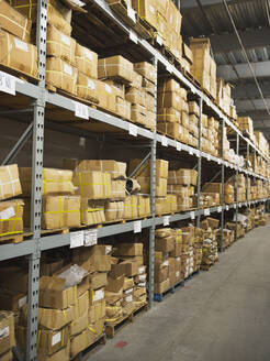 Shelves of boxes in textile factory - BLEF09171