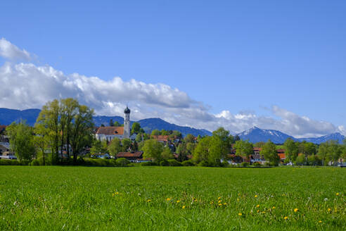Grass and trees in front of town in Alpine Foothills, Konigsdorf, Bavaria, Germany - LBF02611