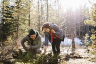 Couple looking at plants, hiking in sunny woods - HEROF37145