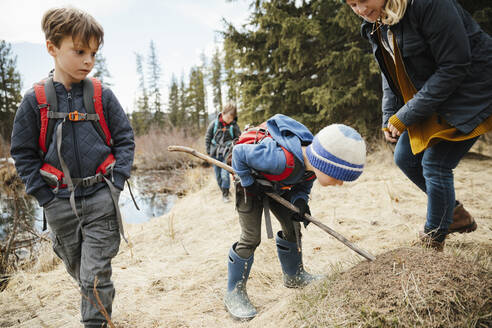 Curious mother and sons hiking in woods - HEROF37220