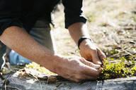 Close up man gardening - HEROF37256