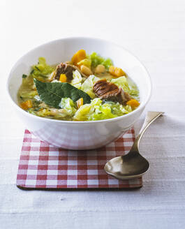 Bowl vegetable soup with beef - PPXF00199