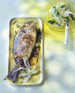 Overhead view of roasted gilthead seabream with fennel on plate - PPXF00202