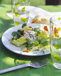 Salad with goat cheese on garden table - PPXF00208