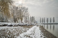 Germany, Baden-Wurttemberg, Bare trees and snow on shore of Lake Constance - SHF02192
