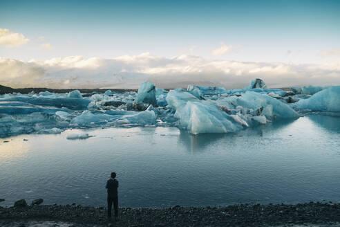 Iceland, South Iceland, Jökulsárlón Iceberg glacier Lagoon - TAMF01734