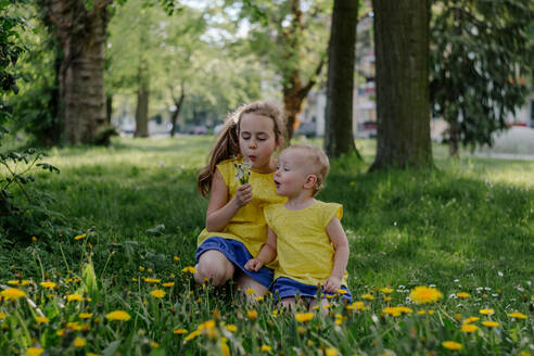 Two sisters sitting together on a meadow blowing blowballs - OGF00024