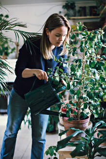 Woman watering potted plant on stool at home - MASF13232