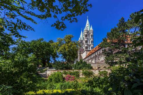 Low angle view of Naumburger Dom and trees against clear blue sky on sunny day - PUF01678