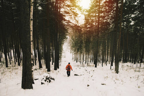 Hiker walking in snowy forest - BLEF09932