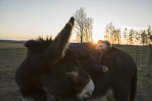 Girl laying on donkey in pasture - FSIF04236