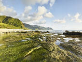 Scenic view of rocky shore at beach in Ka'ena Point State Park against sky - CVF01280