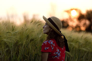 Woman in front of grain field wearing straw hat and red summer dress with floral design at sunset - FLLF00246