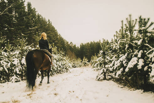 Caucasian woman riding horse on snowy path - BLEF10279