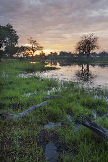 Sunset reflecting in remote river - BLEF11818