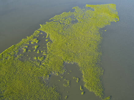 Aerial view over marshes of the Machipongo River, Accomack County, Virginia, USA - BCDF00410