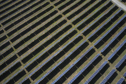 Solar field from above, Virginia, USA - BCDF00415