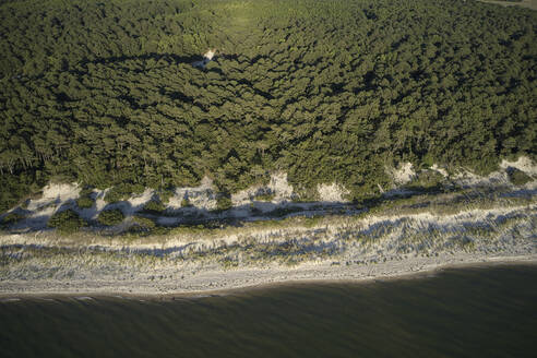 Aerial view of Savage Neck Dunes Natural Area Preserve, Virginia, USA - BCDF00416