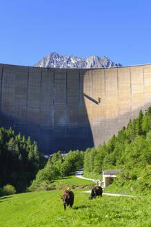 Dam wall at Schlegeis reservoir, Zillertal Alps, Ziller valley, Tyrol, Austria - SIEF08794