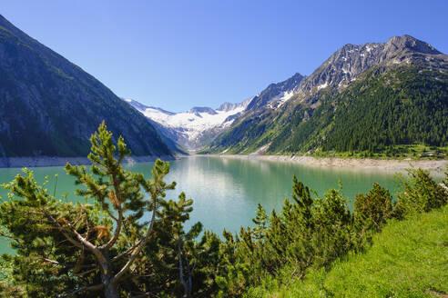 Schlegeis-Stausee, Gletscher Schlegeis-Kees, Hochsteller und Zamser Egg, Zillertaler Alpen, bei Finkenberg, Zillertal, Tirol, Österreich - SIEF08797