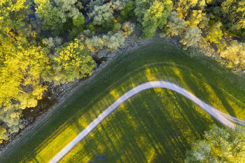 Weg auf Deich nahe der Isarmündung, bei Deggendorf, Luftbild, Niederbayern, Bayern, Deutschland - SIEF08813