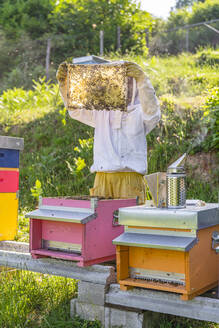 Beekeeper with honeycombs and smoker - MGIF00595