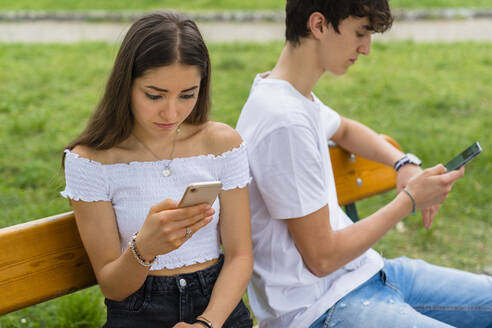 Young couple using smartphone in a park - MGIF00632