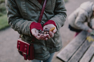 Girl holding chestnuts in her hand - OGF00083