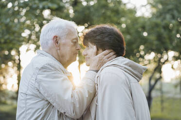 Profile of senior couple in love at sunset - AHSF00701