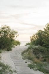 Boardwalk to the beach, Liepaja, Latvia - AHSF00704