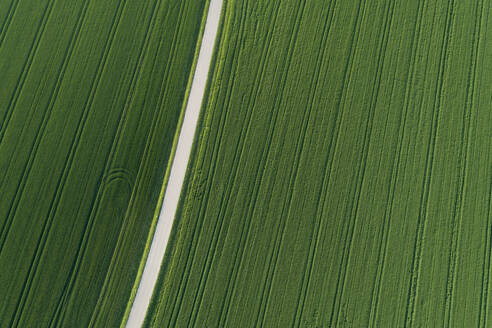 Aerial view of rural road through agricultural fields, Franconia, Bavaria, Germany. - RUEF02266