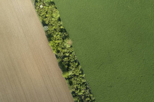 Aerial view trees and agricultural fields, Franconia, Bavaria, Germany - RUEF02278