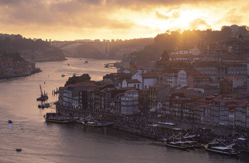 View over Porto and river Douro at dusk, Portugal - FCF01793