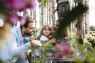 Family buying plants in a garden center wth the daughter in shopping cart holding a flower - JRFF03467