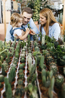 Mother, father and daughter in the cactus area inside a garden center - JRFF03491