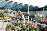 Female worker in a garden center with a tablet caring for flowers - JRFF03512