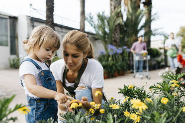 Female worker of a garden center showing flowers to a little girl - JRFF03530