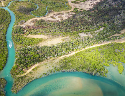 Aerial view of small boat arriving at the sea by the river, surrounded by forest in Queensland, Australia - GEMF02996