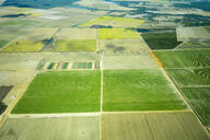 Aerial view of cultivated green fields in Queensland, Australia - GEMF03002