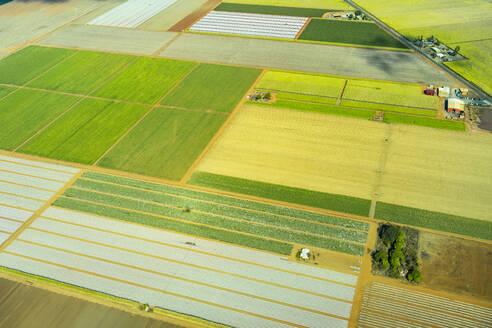 Aerial view of green cultivated fields and farms in Queensland, Australia - GEMF03005
