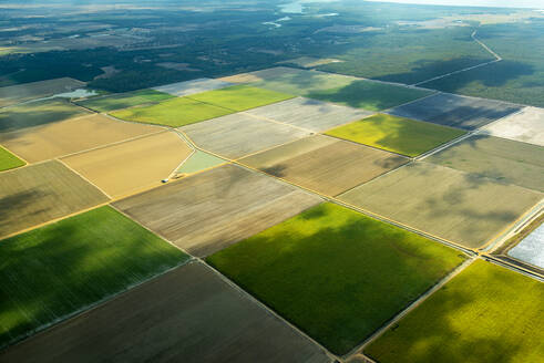 Aerial view of green fields cultivated in Queensland, Australia - GEMF03014